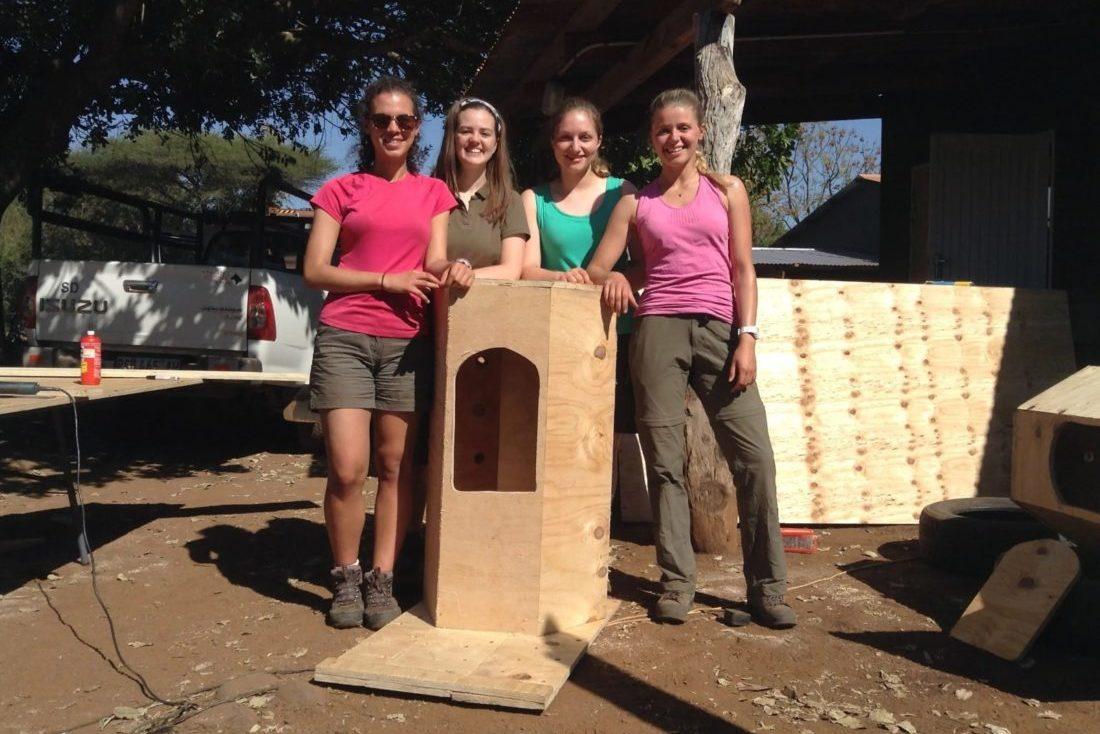 building hornbill nesting boxes
