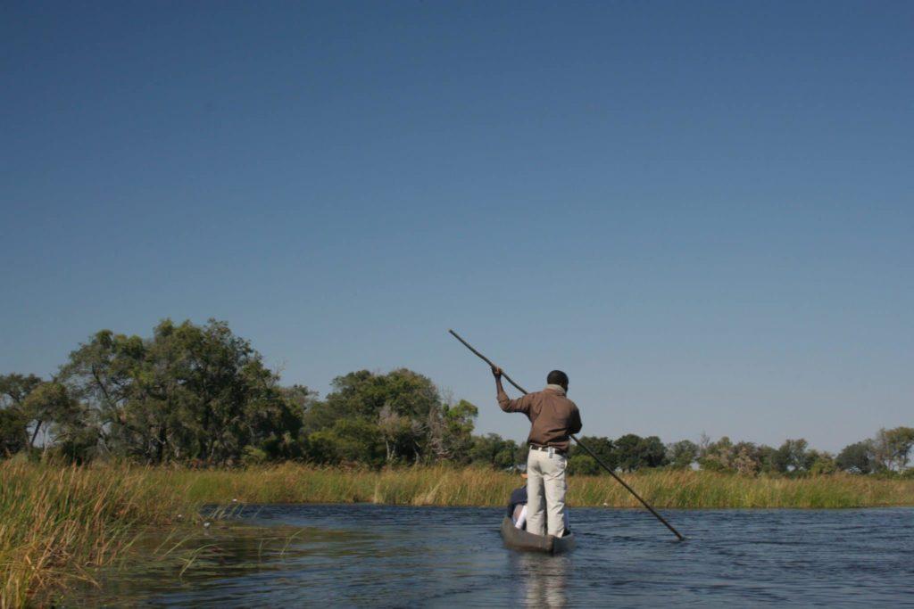 A man standing on a mokoro canoe traverses the delta